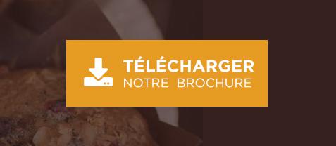 bouton brochure FR